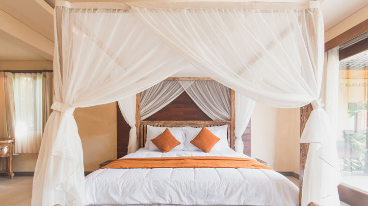 White Mosquito Net with Brown Wooden Bed Frame