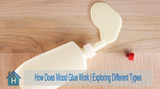 How Does Wood Glue Work
